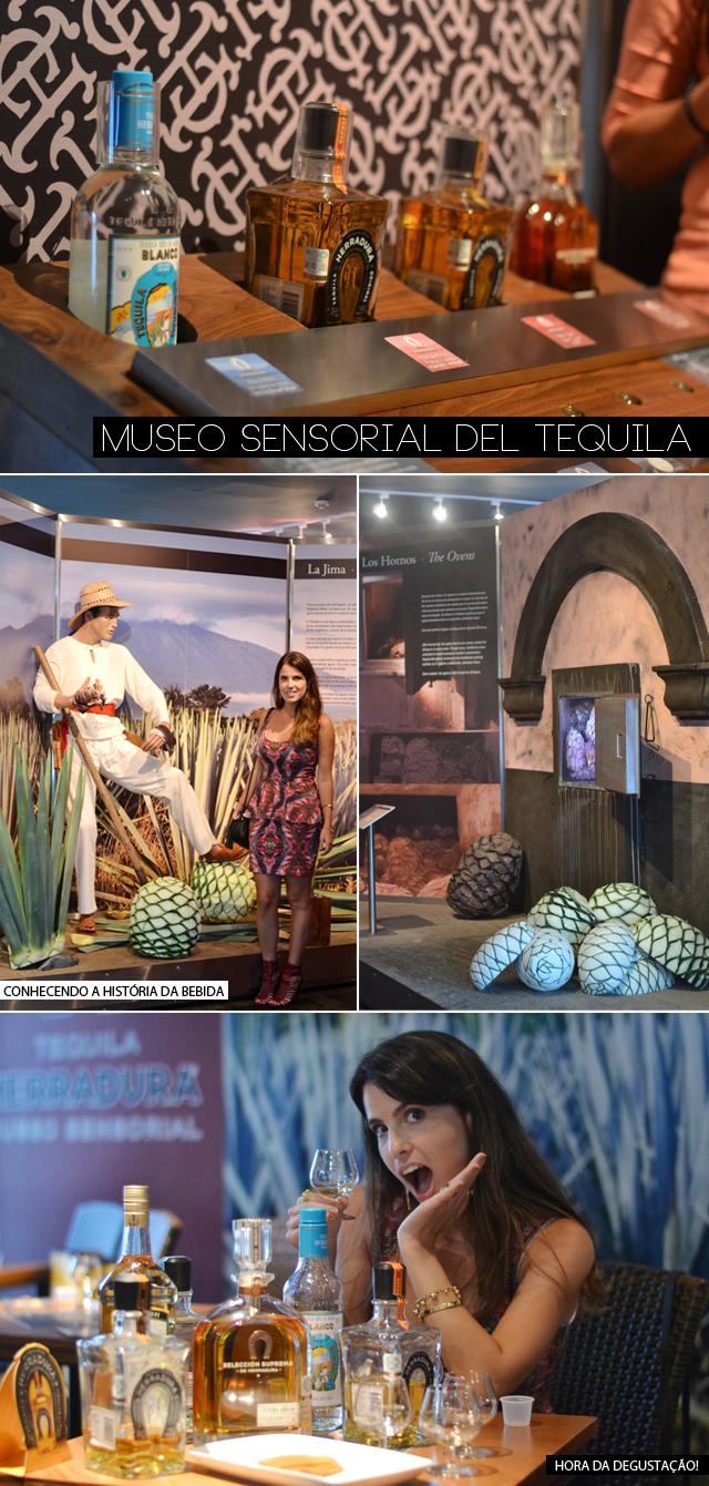 museu-tequila-passeios